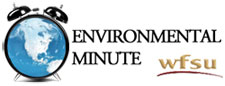 The Environmental Minute