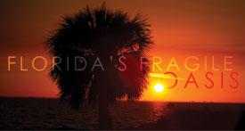 Florida's Fragile Oasis