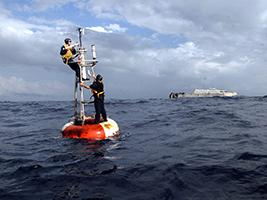 Marine Data