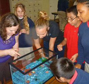 Classroom demonstration.